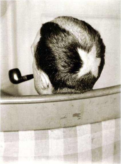 Many Ray, Tonsure (Marcel Duchamp), 1919.
